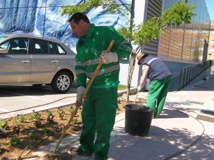 Torrej n se suma al programa de recualificaci n social for Oficina de empleo de torrejon de ardoz
